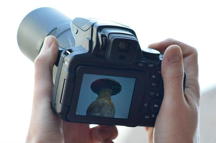 Nikon camera zoom