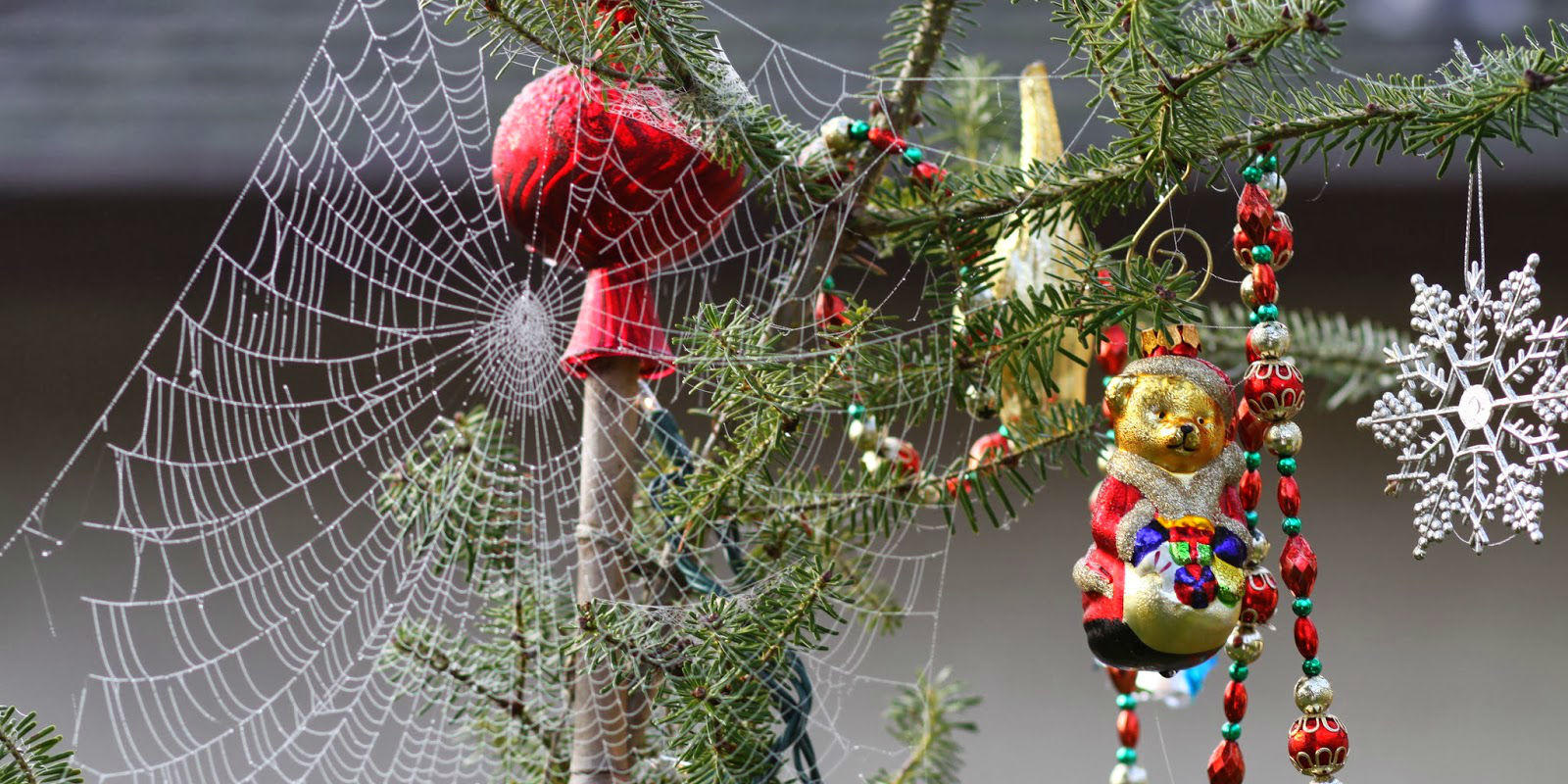 christmas tree spider web