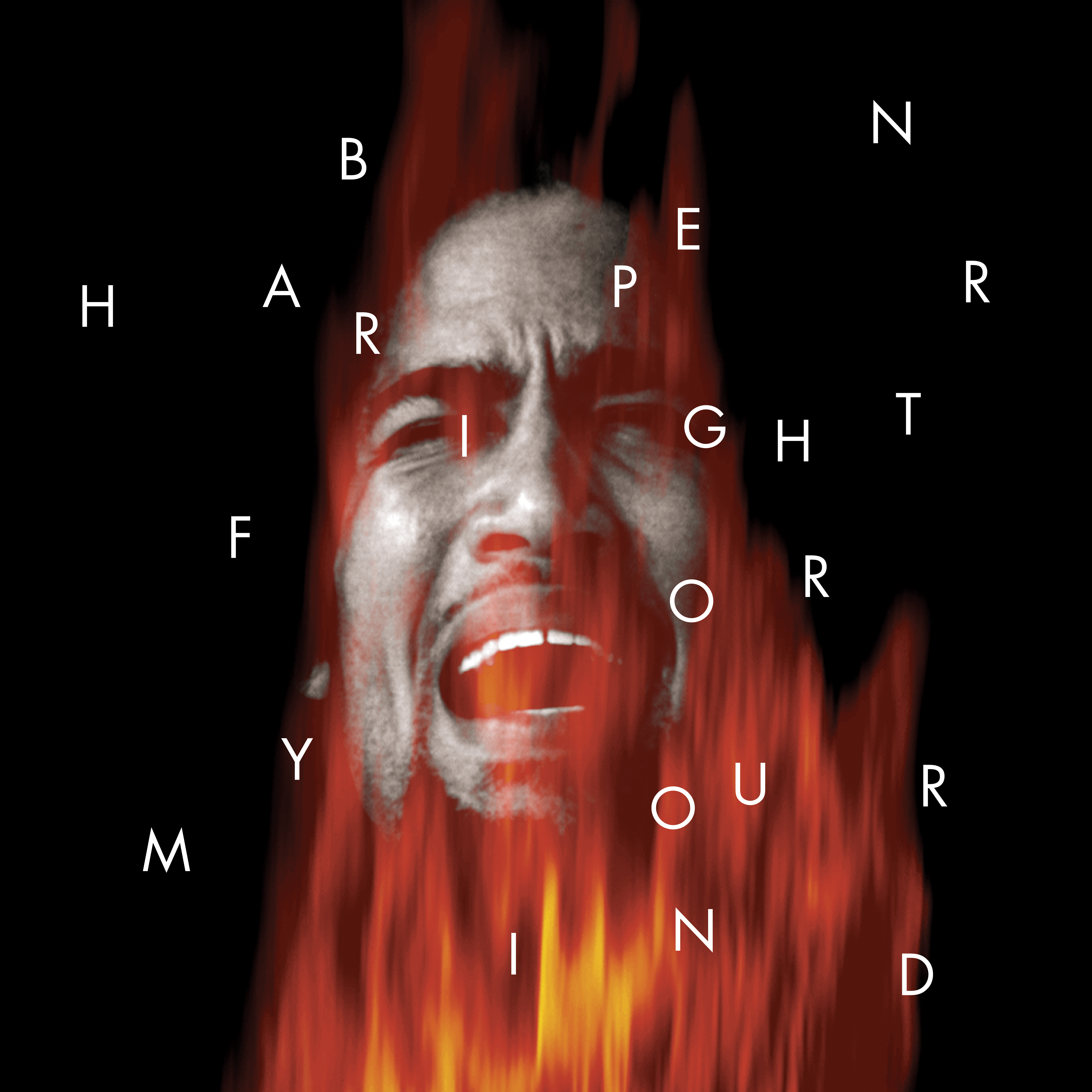Ben Harper Fight for Your Mind